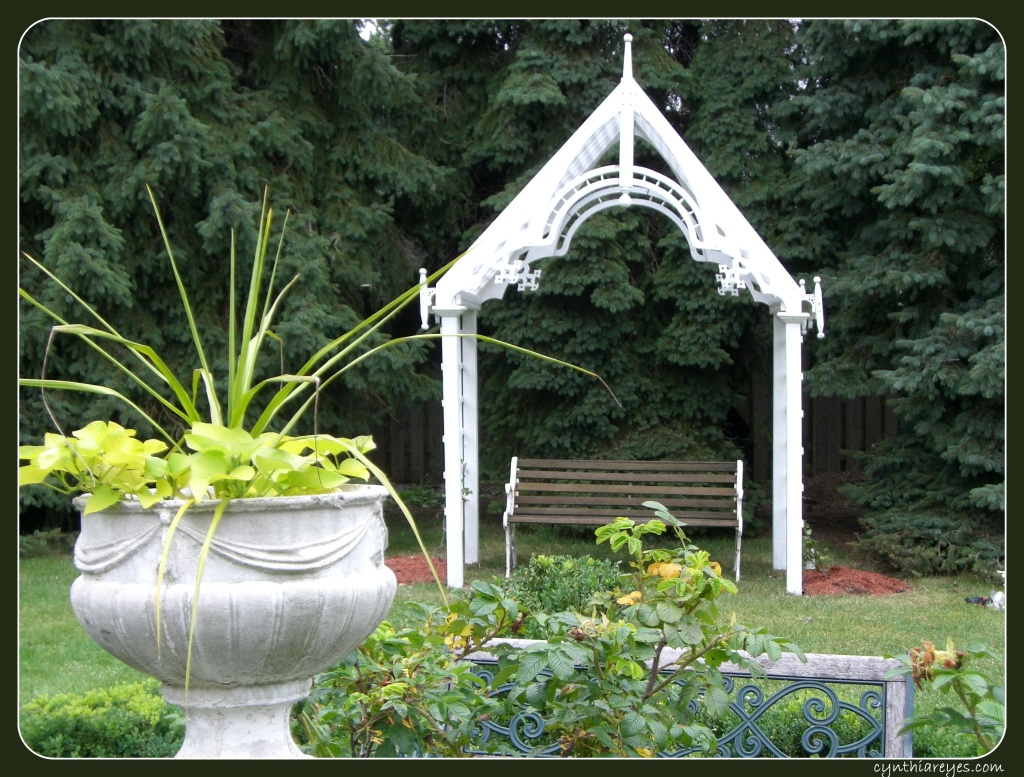 Blog Photo - The Arbour2