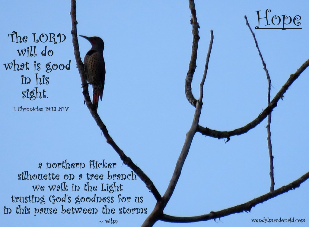 God is Good #tanka by Wendy L. Macdonald with northern flicker image greenlightlady.wordpress.com