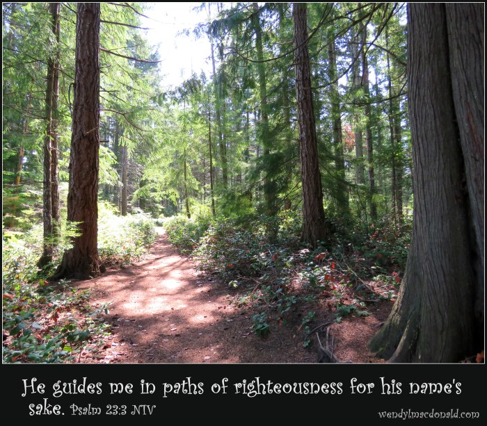 Psalm 23:3 NIV Forest path.