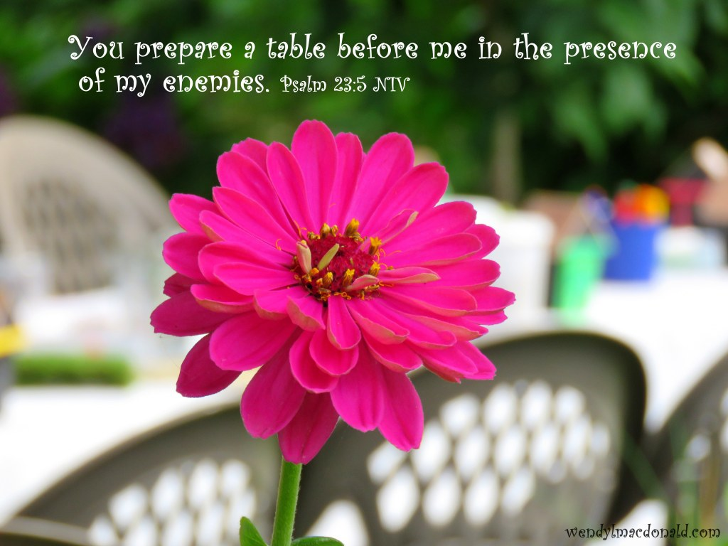 Psalm 23:5 NIV