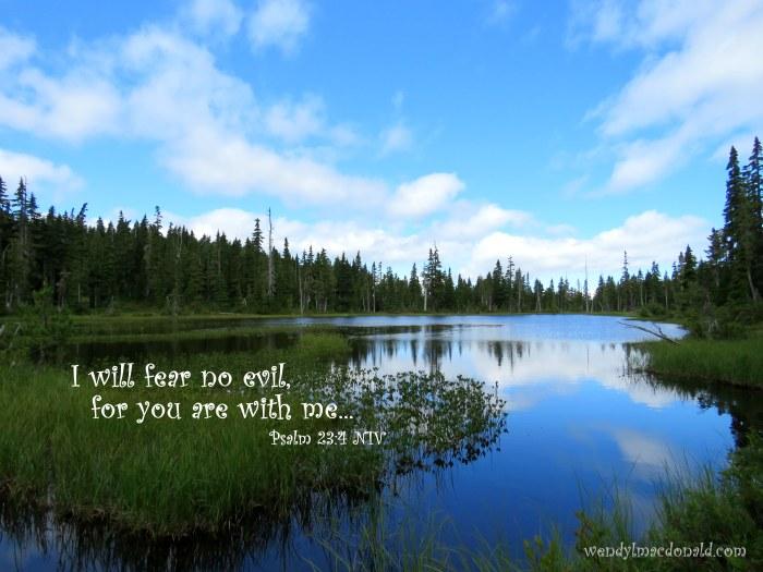 Psalm 23:4 NIV