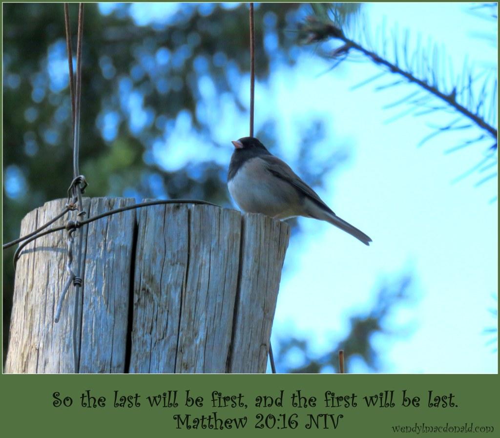 Last but Not Lost: Biblical Encouragement Wendy L. Macdonald