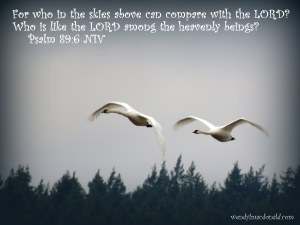 Focusing on Beauty #amwriting wendylmacdonald.com For who in the skies above can compare with the LORD? Who is like the LORD among the heavenly beings? Psalm 89:6 NIV