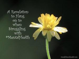 A Revelation to Hang on to When Struggling #mentalhealth wendylmacdonald.com